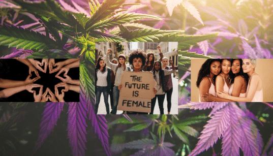 Women, Sex, Cannabis